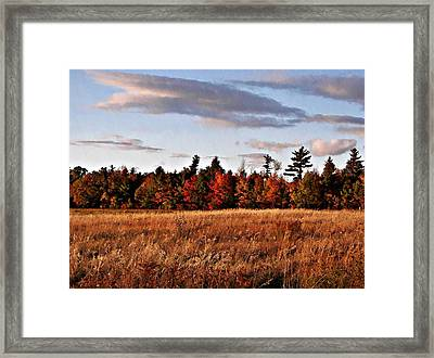 The Field At The Old Farm Framed Print