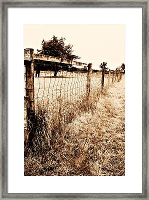 The Field Framed Print by Cathie Tyler