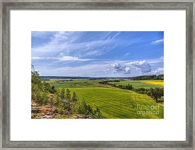 The Field Scenery Framed Print