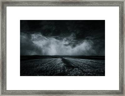 The Field Framed Print by Stefan Eisele