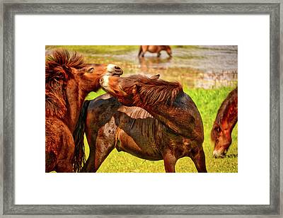 The Fight Framed Print