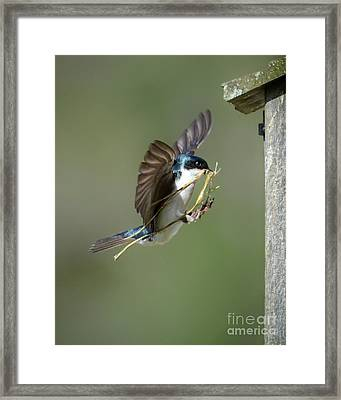 The Finishing Touches Framed Print