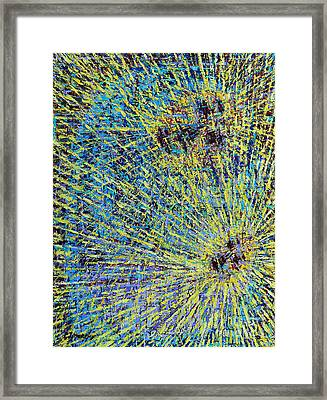 The First Christmas Framed Print by Patrick J Murphy