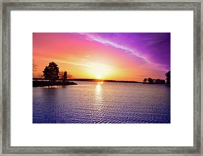 The First Day Of Spring Framed Print by Bill Cannon