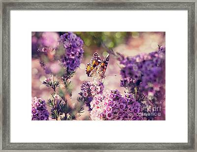 The First Day Of Summer Framed Print by Linda Lees