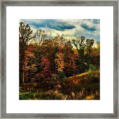 The First Days Of Fall Framed Print