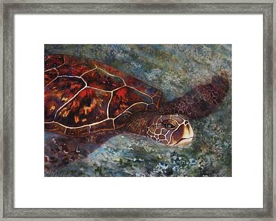 The First Honu Framed Print