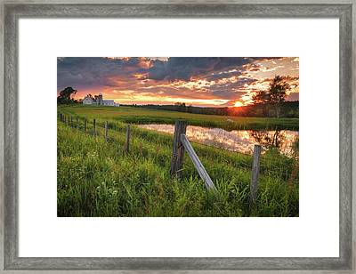The First Of Summer Framed Print