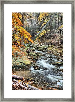 The First Snow Framed Print by JC Findley