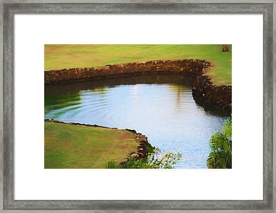 The Fish Pond Framed Print by Bonnie Follett