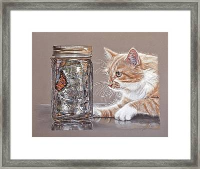 The Fixation Framed Print