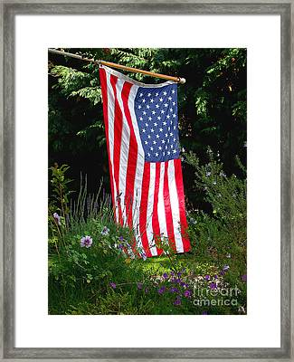 The Flag Framed Print by Marc Bittan