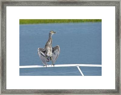 The Flasher 3 Framed Print by Bruce W Krucke