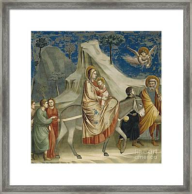 The Flight Into Egypt Framed Print by Giotto di Bondone