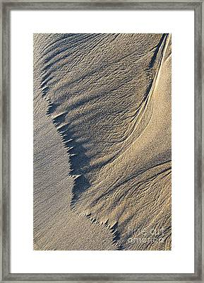 The Flight Of Sand Framed Print by Tim Gainey