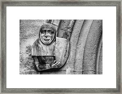 Framed Print featuring the photograph The Floating Guard by Christi Kraft
