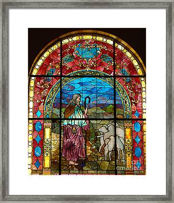 The Flock Framed Print by Diane E Berry