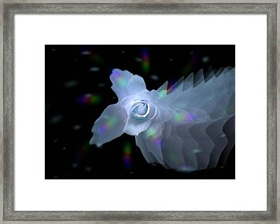 The Floral Dance Of Butterfly Rose - Blue Framed Print by Jacqueline Migell