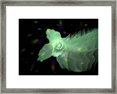 The Floral Dance Of Butterfly Rose - Green Framed Print