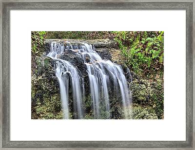 The Florida Waterfall Framed Print by JC Findley