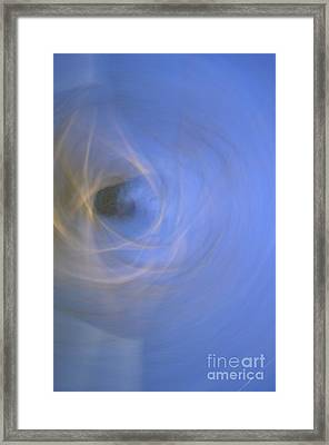 The Flow Of A Tree 1 Framed Print