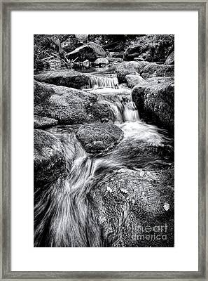 The Flow Framed Print by Tim Gainey