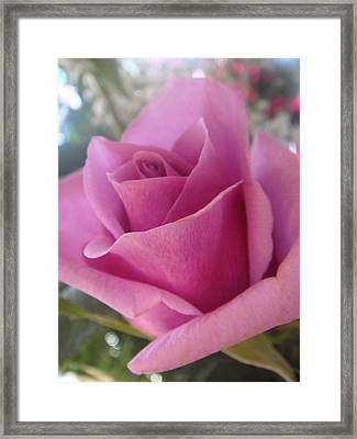 The Flower Of Love Framed Print by Patricia M Shanahan