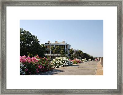 The Flowers At The Battery Charleston Sc Framed Print