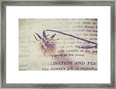 The Flower's Job Framed Print