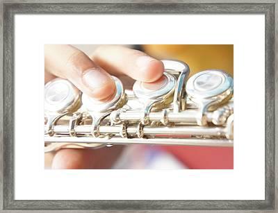 The Flute Framed Print by Art Spectrum