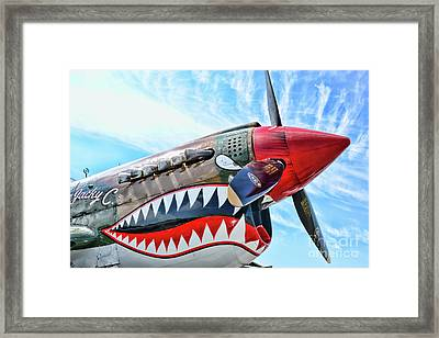 The Flying Tiger Framed Print by Paul Ward