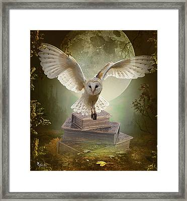 The Flying Wise Framed Print