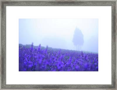 The Fog Framed Print by I love photo, camera and Nikon!!