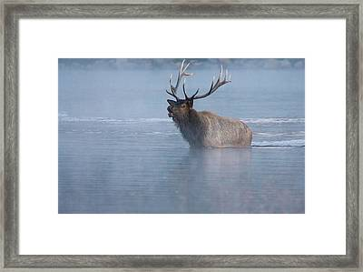 The Foggy Bugle Framed Print by John De Bord
