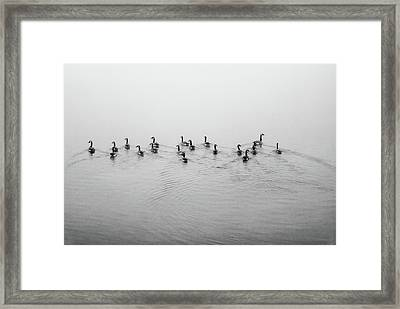 The Foggy Passage Framed Print