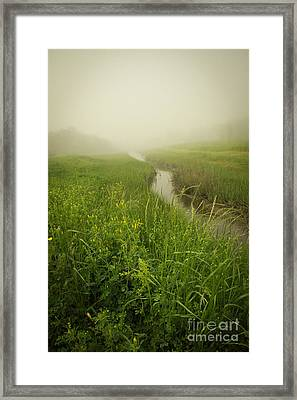 Framed Print featuring the photograph The Foggy Trail by Sandy Adams