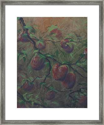 The Forbidden Fruit Framed Print by Kenneth McGarity