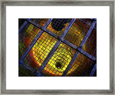 The Forbidden Well Framed Print by Roberto Alamino
