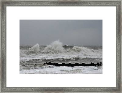 The Force Of Nature - Jersey Shore Framed Print by Angie Tirado