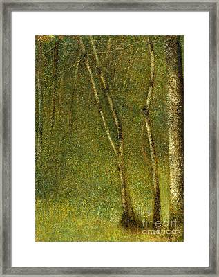 The Forest At Pontaubert, 1881 Framed Print by Georges Pierre Seurat