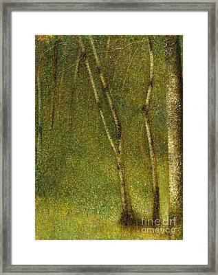 The Forest At Pontaubert, 1881 Framed Print
