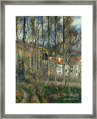 The Forest At The Hermitage Framed Print by Celestial Images