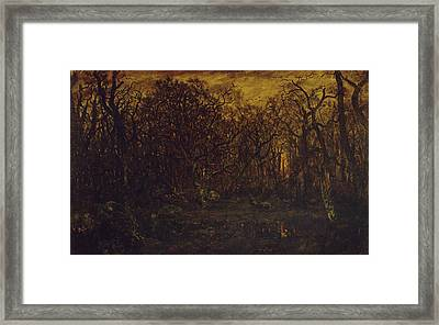 The Forest In Winter At Sunset Framed Print