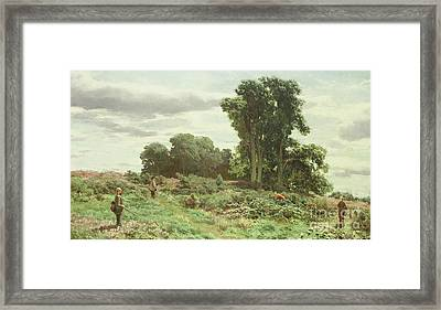 The Forest Of Meiklour, Perthshire Framed Print by David Farquharson