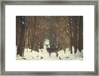 The Forest Of Snow White Framed Print by Carrie Ann Grippo-Pike