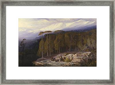 The Forest Of Valdoniello, Corsica Framed Print
