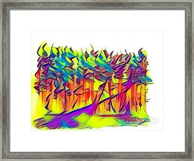 The Forest Trail  Framed Print