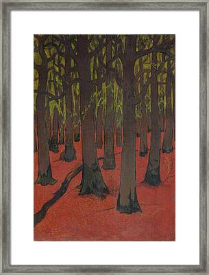 The Forest With Red Earth Framed Print