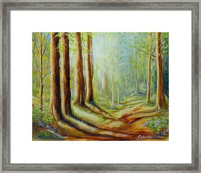 The Forest's Spell Framed Print