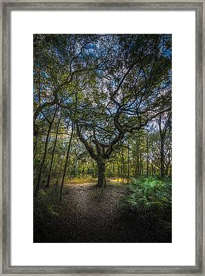 The Fork In The Road Framed Print by Marvin Spates